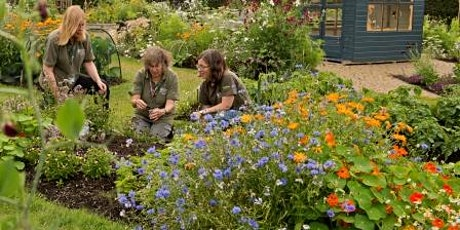 Extra Session: Online Garden Social: Scottish Plant Lore tickets