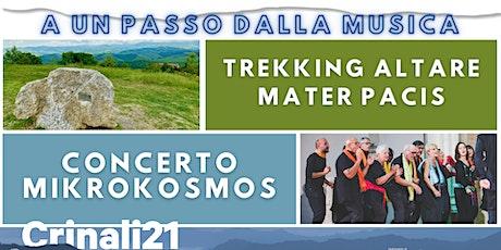 Concerto Monte Calvo - Altare Mater Pacis biglietti