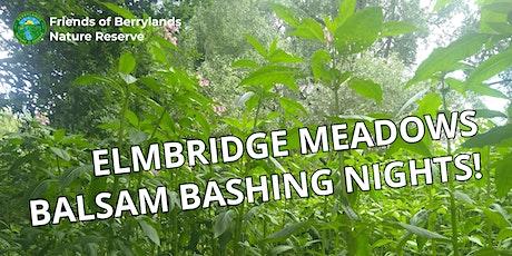 Elmbridge Meadows Nature Reserve - Evening Balsam Bashing tickets