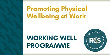 Promoting Physical Wellbeing at Work tickets