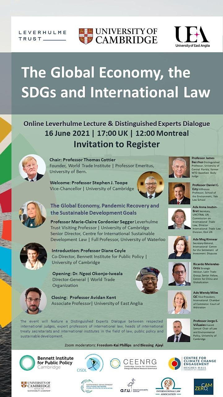 The Global Economy, the SDGs and International Law image