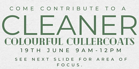 Come contribute to a cleaner colourful Cullercoats tickets