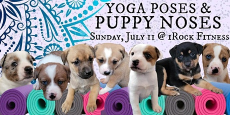 Yoga Poses & Puppy Noses with iRock Fitness tickets