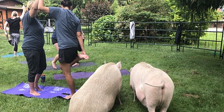 Yoga with pigs and turkeys tickets