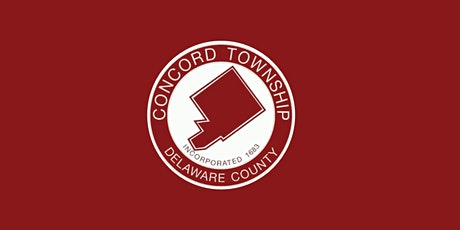 Voice Your Vision Concord: Community Identity + Communication tickets