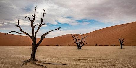 Zoom Around the World - Namibia tickets