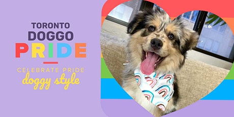 Doggos Pride Meet Up In Toronto  tickets