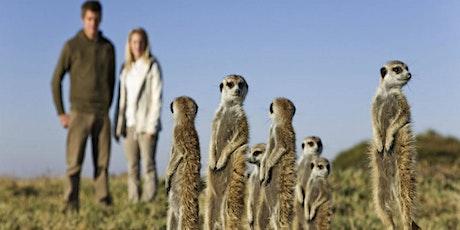 PASSPORTS: Wildlife Habituation - From Meerkats to Chimps tickets