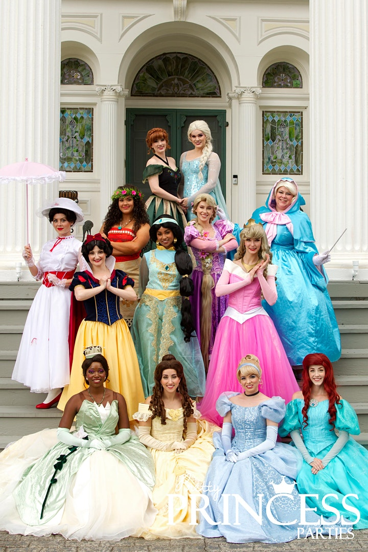 St. Louis VIP Princess Party image