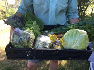 Harvest Share of the Week: July 1, 2021 tickets