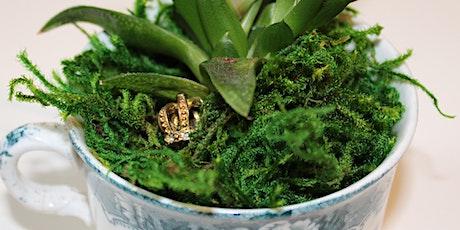 Make Your Own Teacup Fairy Garden tickets