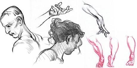 Karl Gnass' Figure Drawing School: Drawing the Heads, Hands & Feet tickets