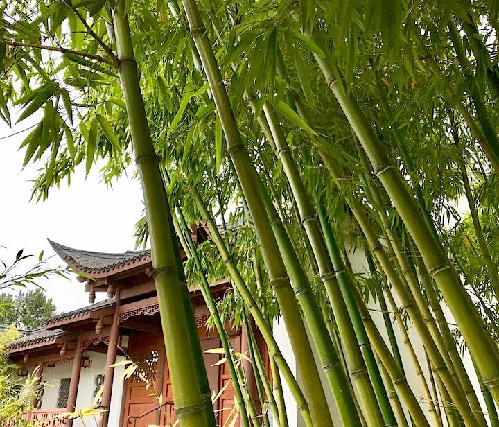 Bamboo Circle Celebration 2021 image