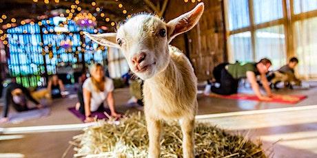 Goat/Sheep YOGA fundraiser tickets