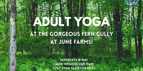 Adult Yoga in Fern Gully at June Farms! tickets