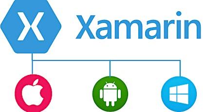 4 Weekends Beginners Xamarin Mobile apps Training Course Rotterdam tickets