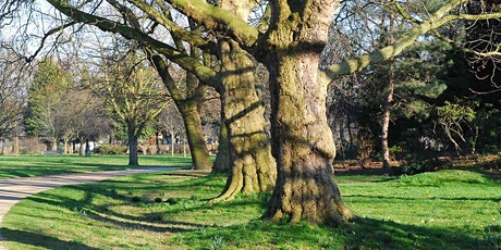 Walking Tour - Capital Ring: Section 12: Highgate to Stoke Newington tickets