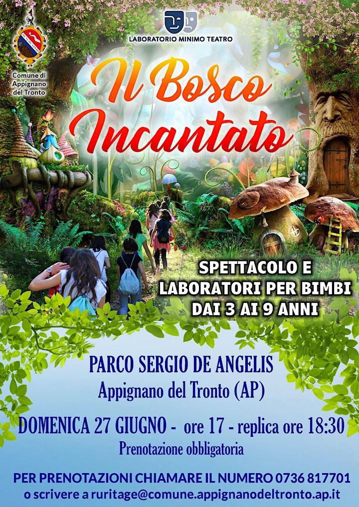 Immagine Il Bosco Incantato