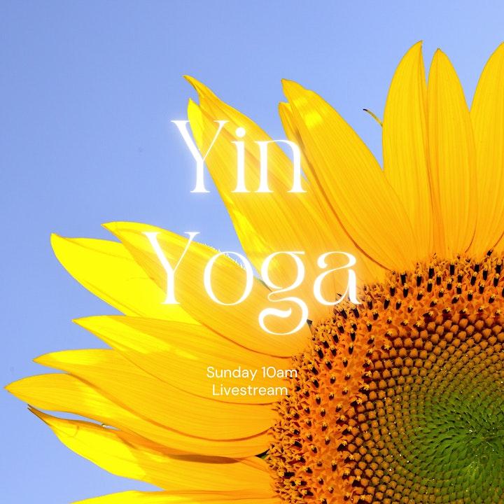 Yin Yoga - Livestream Sunday image