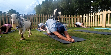 Greenville Goat Yoga tickets