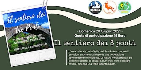Escursione Valle del Savuto - Dom 20 Giugno  2021 biglietti