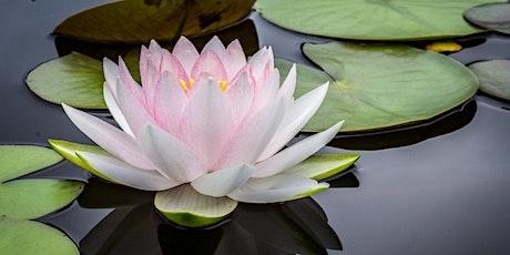 Mindfulness, Reiki and Meditation Workshop tickets