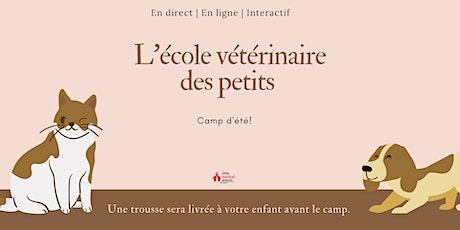 L'école vétérinaire des petits billets
