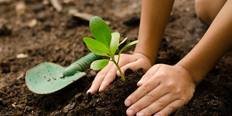 Rosewell Grows Summer Gardening Club (7-12 years) tickets