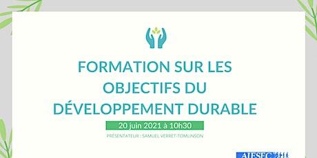 Webinar sur les objectifs de développement durable de l'onu billets