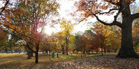 Forest Park Easy Hike In Queens tickets