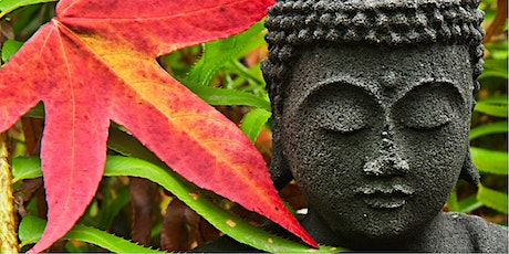 Usui Reiki Level 1 - Learn healing for people & animals tickets