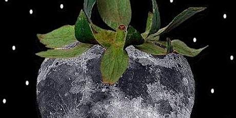Strawberry Super Moon Crystal Bowl Meditation  Attend Via Zoom tickets