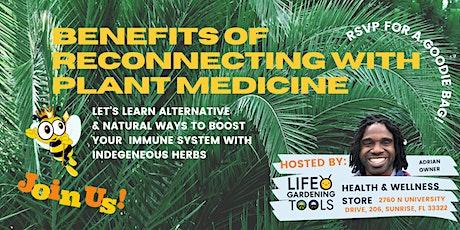 Vibes & Herbalism 101 - Indigenous  Herbs of America | Greet and Meet tickets