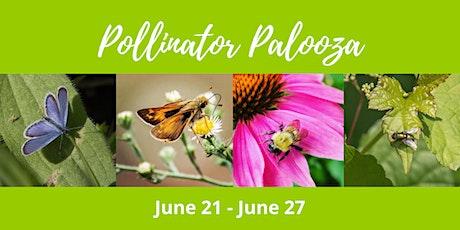 Pollinator Palooza tickets