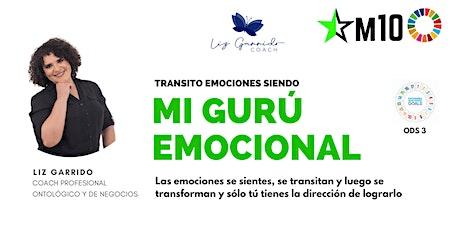 Transito emociones siendo gurú emocional entradas