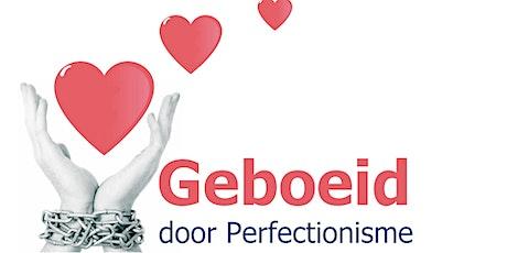 Hoe omgaan met perfectionisme voor LOOPBAANCOACHES - 2 daagse training tickets