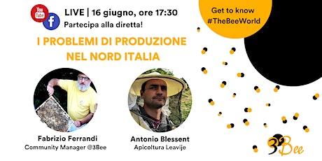 Stagione apistica 2021: i problemi di produzione nel Nord Italia biglietti