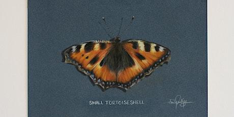 Beginners Butterfly Class in Pastel Pencils tickets