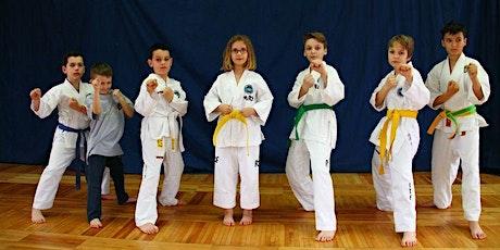 Atelier de taekwondo cu prof. Tunyogi Hajnalk/ Vârstă participanți 6-13 ani tickets