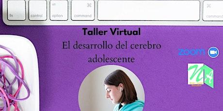 El desarrollo del cerebro del adolescente (Taller Virtual) entradas