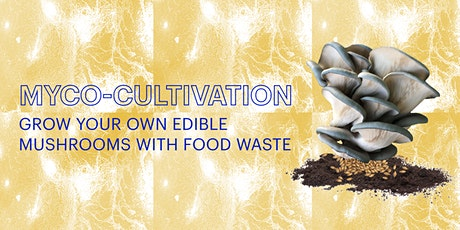 Myco-cultivation: Grow Your Own Edible Mushrooms with Food Waste tickets