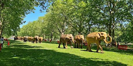 ECC Leisurely Ride (2): Central London Elephants tickets