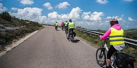 Tour in e bike nella Murgia materana tickets