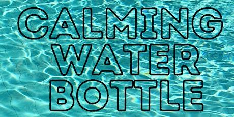 Calming Water Bottle Activity for Miami Public Schools tickets