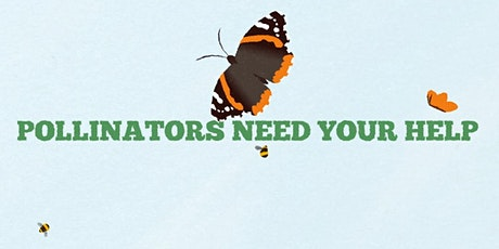 Pollinator Monitoring Workshop with Nigel Jones tickets