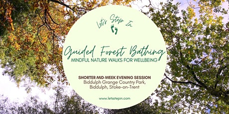 Evening Guided Forest Bathing & Meditation Session tickets