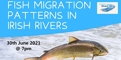 Fish Migration Patterns in Irish Rivers tickets