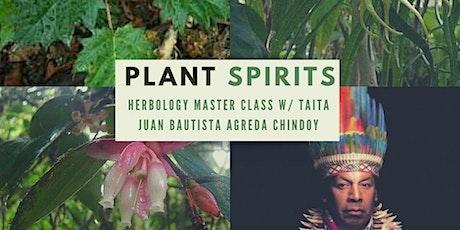 Plant Spirits - Indigenous Herbology of Sibundoy Putumayo tickets
