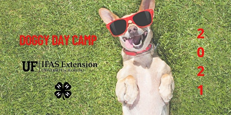 Doggy Day Camp tickets