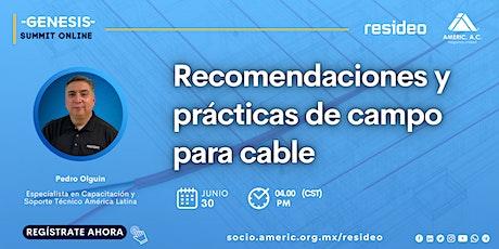 Recomendaciones y prácticas de campo para cable entradas